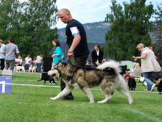 NKK_Drammen_2011__5__1.JPG