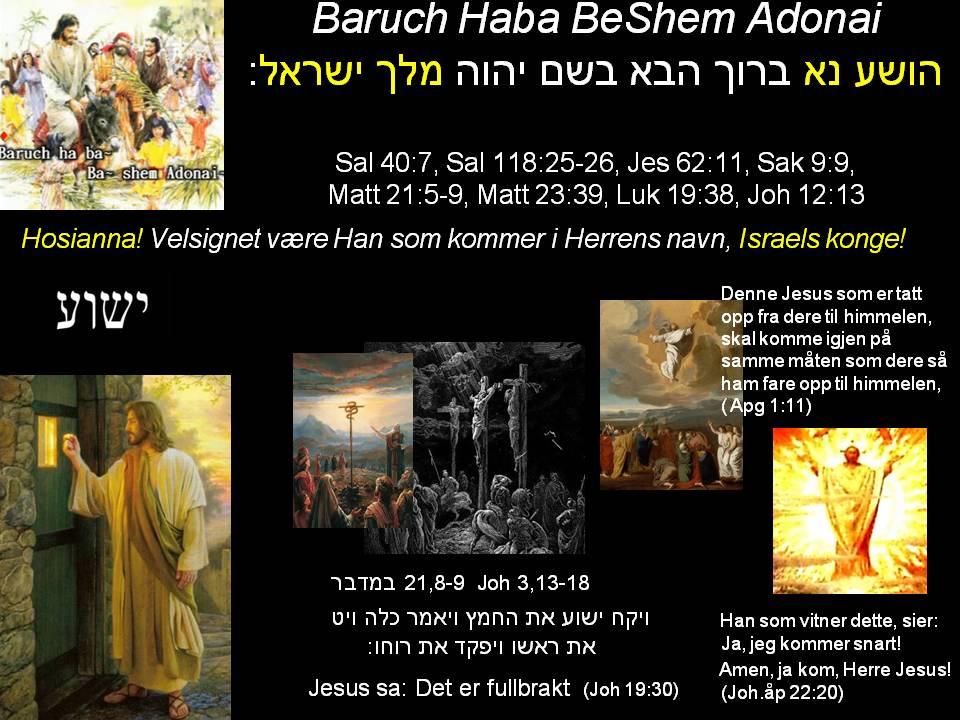 Baruch Haba BeShem Adonai Yeshua HaMessiach Ben Elohim Melech Yisrael Hosannah Ben David Jesus kom - Kristi himmelfartsdag - Jesus kommer snart igjen!