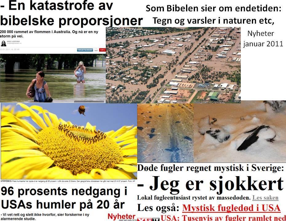 Bibelen er troverdig endetidstegn flom fugler bier katastrofer varsler Jesu gjenkomst Gud har kontroll Vend om til Jesus Kristus.jpg