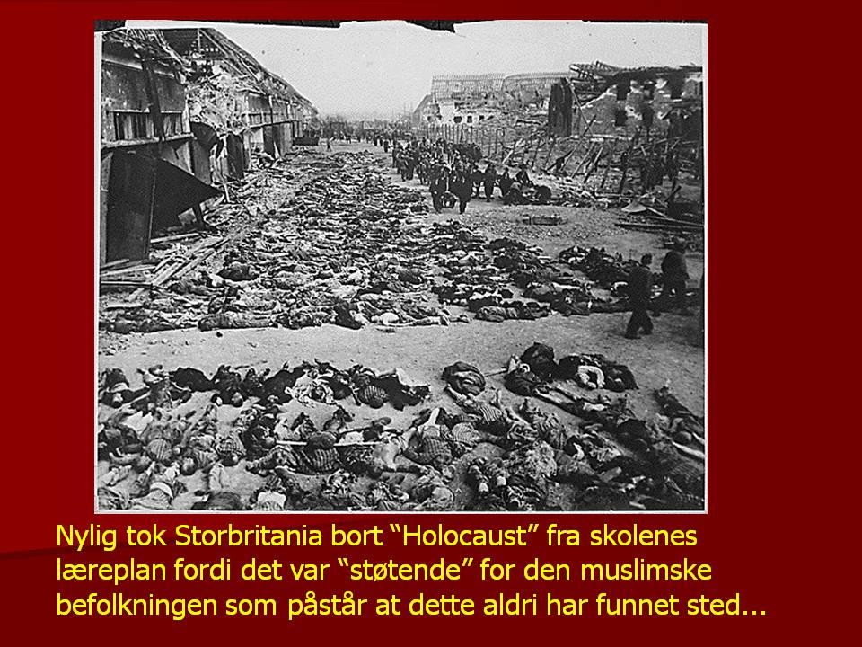Holocaust facts 5.JPG