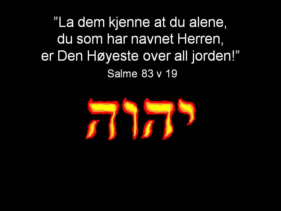 Salme_83_v19.JPG