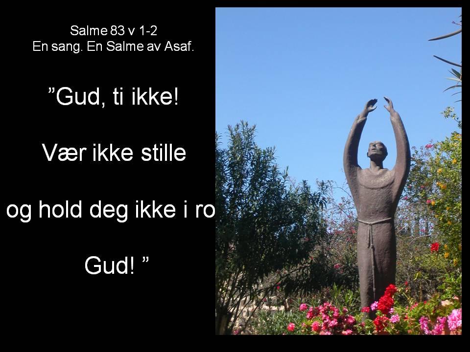 Salme_83_v1_og_2.JPG