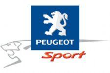 peugeotsport_logo_stor.jpg